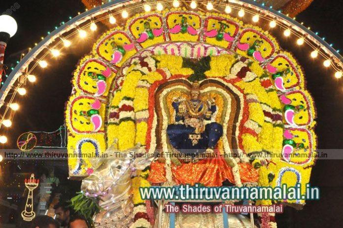 Karthigai Deepam Day 5 night