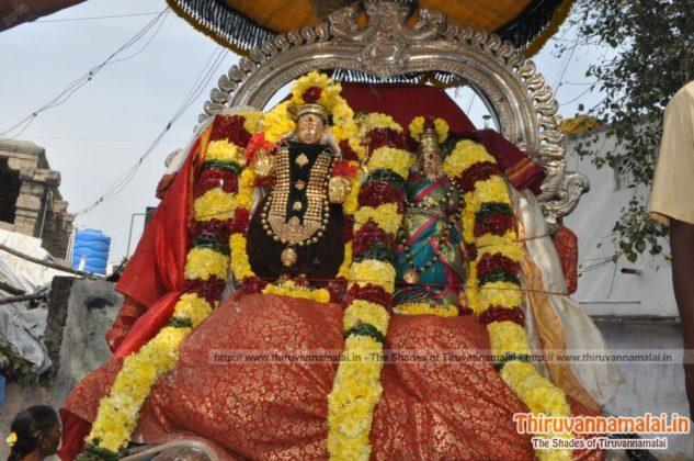 Uthrayanakala theerthavari pic 2019