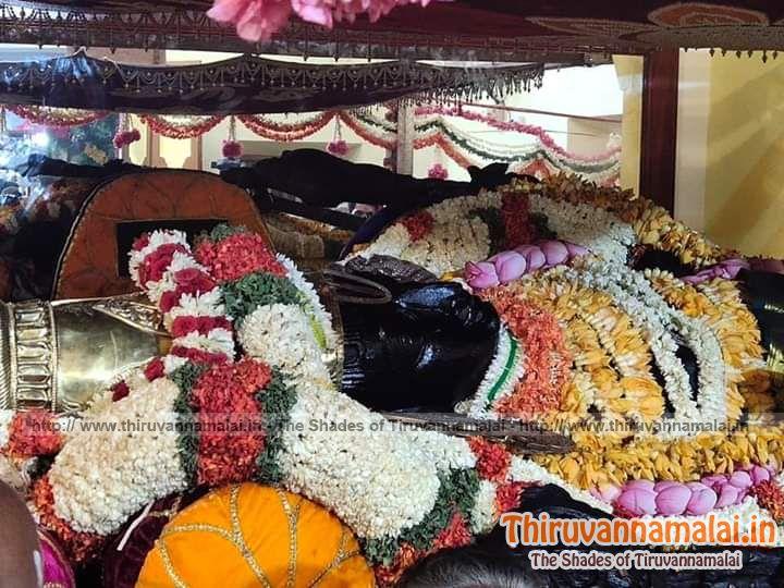 www thiruvannamalai in/wp-content/uploads/2019/07/